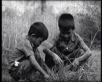 """Phal et son frère jouant dans l'herbe qui envahit S21. Image extraite du film """"Les enfants du Cambodge"""" (Direction du cinéma du Cambodge)"""