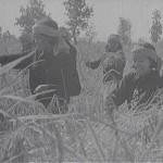 Dans ces films de propagande, le sourire des paysannes est de rigueur, à l'opposé du récit que fait Chim Meth. (Direction du cinéma cambodgien)